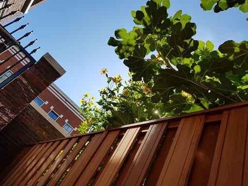 Gardener Rotterdam