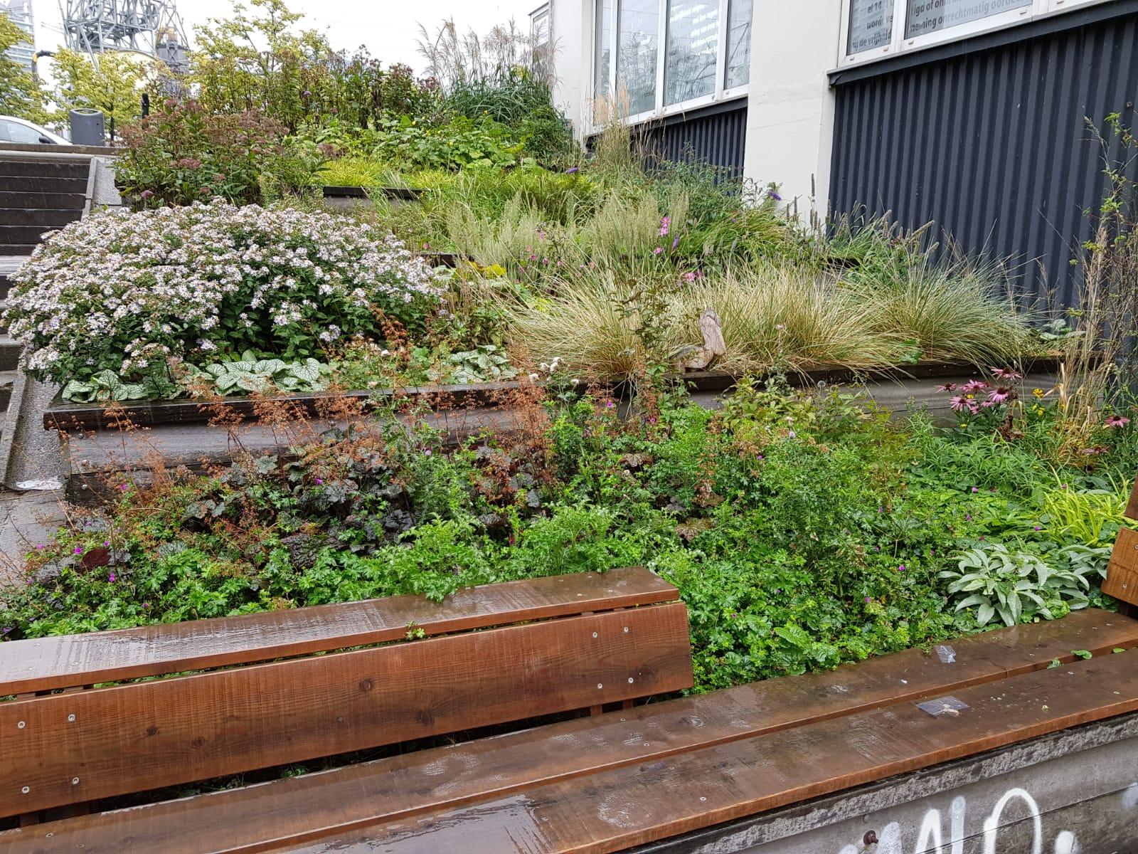 garden VvE